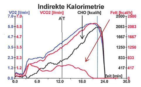 Mountainbiker mit sehr gut trainiertem Fettstoffwechsel (roter Pfeil), dadurch werden die Zuckerreserven (Glykogen – schwarzer Pfeil) erst später aufgebraucht. AT: Aerobe Schwelle.