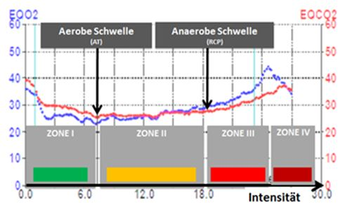 Trainingszonen, aerobe und anaerobe Schwelle grafisch dargestellt während eines spiroergometrischen Leistungstests