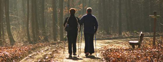 Mit Nordic Walking kann die Grundlage trainiert werden