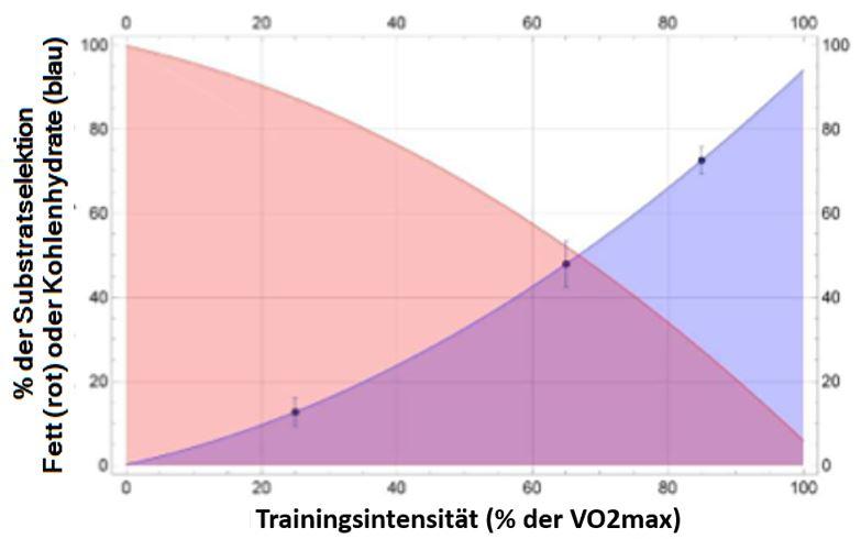 Die Substratselektion ist abhängig von der Intensität und Dauer der Belastung