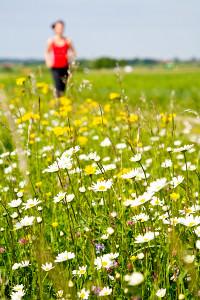 Trügerische Idylle: Für Läuferinnen und Läufer mit Pollenallergie