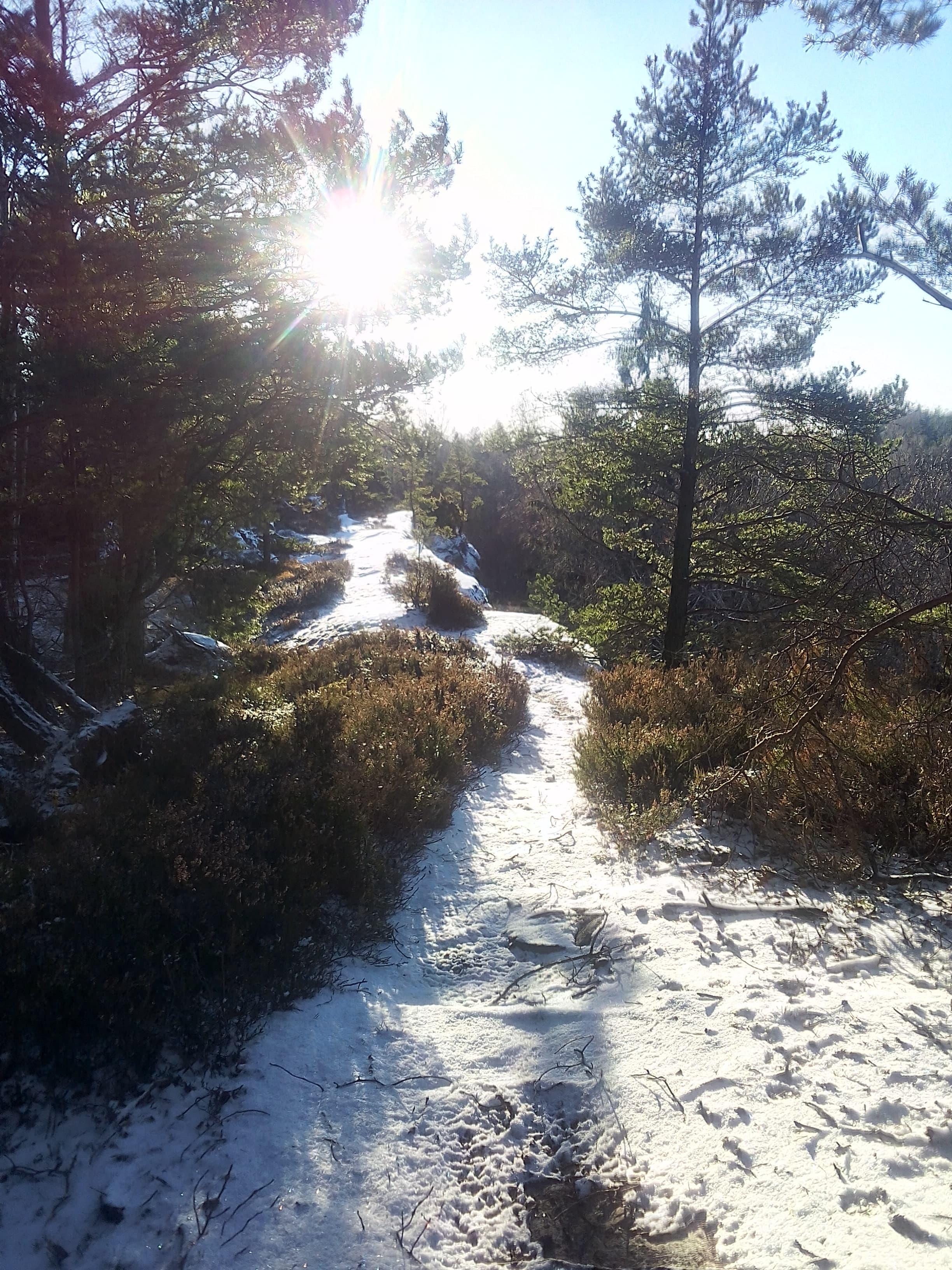 wintertrail-schweden-min